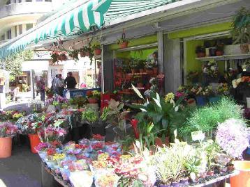 Haifa affaires droit assurances for Chambre du commerce luxembourg